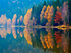 5 Ways to Paint Autumn into Your Writing